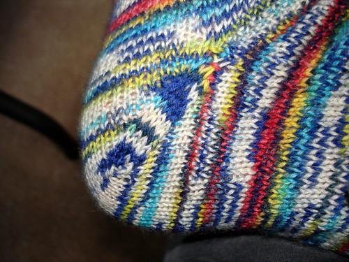 Parrot Sock Heel  7-14-2009 6-31-22 PM