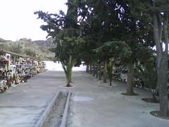 DSC00366