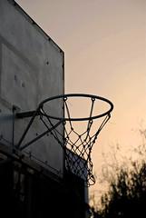 Reminiscencia del ser amado (por una pelota de básquet)