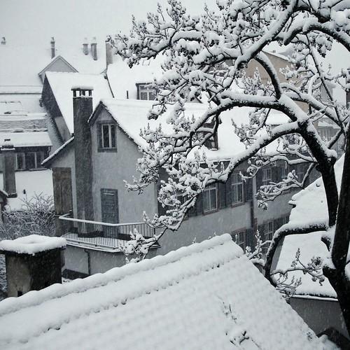 Aus dem Küchenfenster Winter DSC0135_e