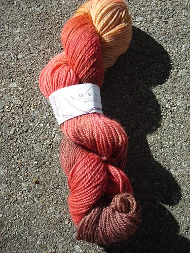 Lorna's Laces Shepherd Sport