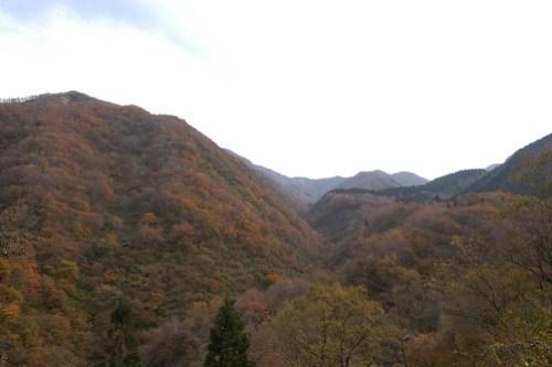福井県勝山市「赤兎山」に向かう道から