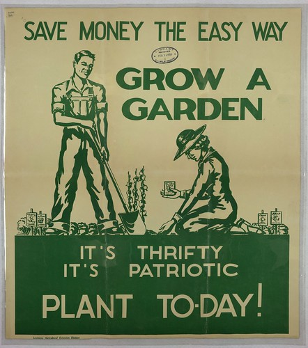 Save_Money_Grow_Garden