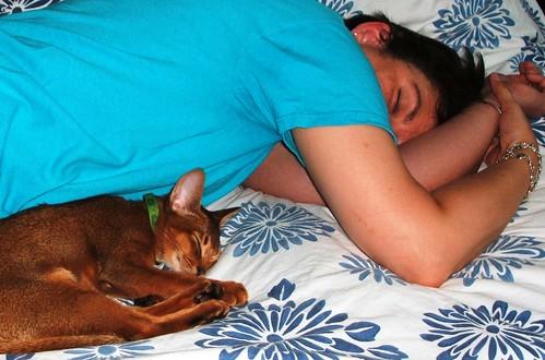CocoJacoby-nap