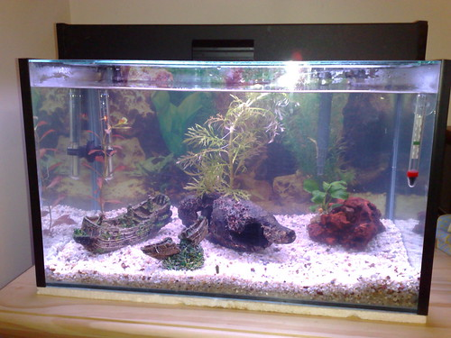 Our 20-inch tank