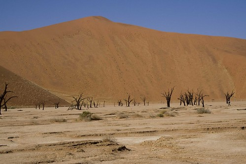 DESIERTO DEL NAMIB09 by you.