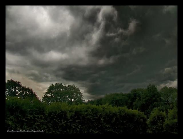 #167/365 Cloudy