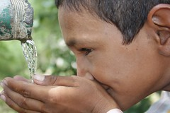 Clean drinking water from rainwater harvesting...