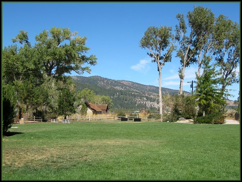 Wilson Commons Park