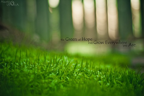 The Green of Hope Will Grow Everywhere you Are.