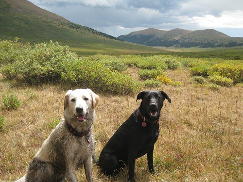 Lucy and Fabi at Guanella Pass