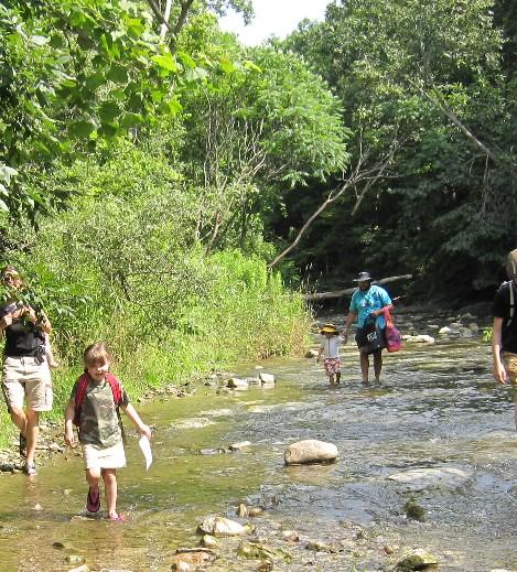 Creek Walk