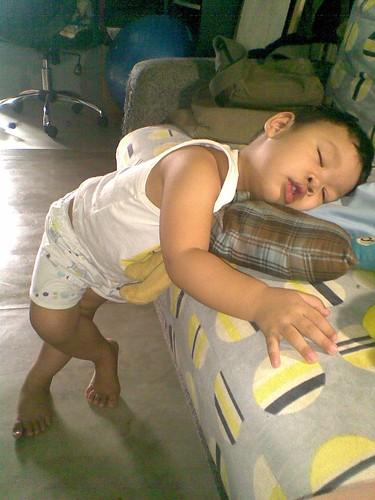Sleep standing!