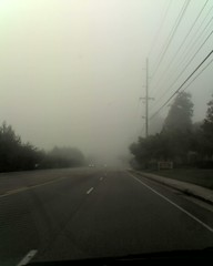 Fog...Is Stephen King in town?