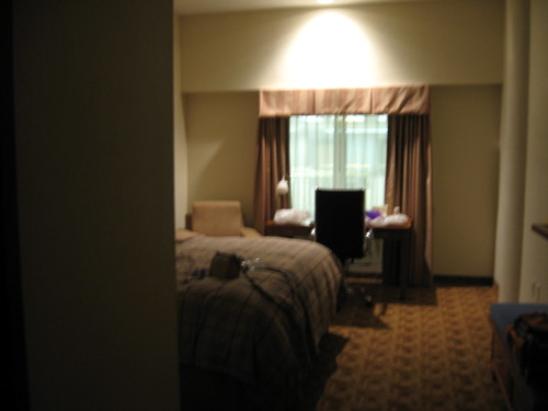 Hotel room at the Baronne Plaza Hotel, New Orleans