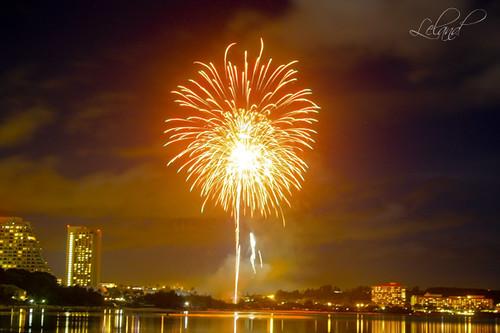 photo of fireworks in night sky