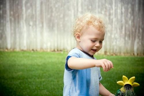 Sprinkler. Summer. by you.