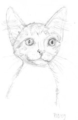 Drawing kittens, part 10