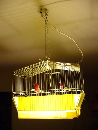 nieuw boven de eettafel; vogelkooilamp