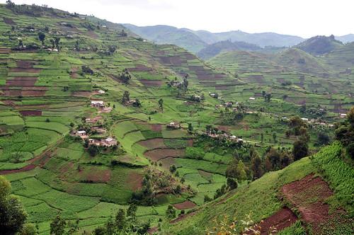 uganda GV6_lo