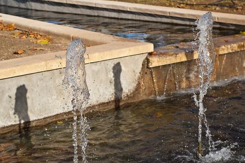 La sombra del agua