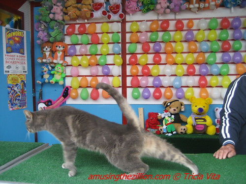 Target the Coney Island Cat in Jimmys Balloon Dart on the Bowery. Photo © Tricia Vita/me-myself-i via flickr