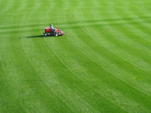 mowing fenway
