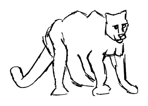 Drawing a cougar, part 4