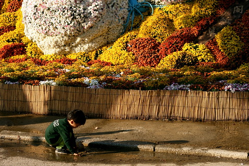 Small child and Sake Bottle flowers