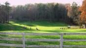 Golfers at Tot Hill
