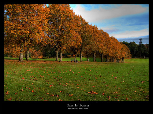 FALL IN FORRES