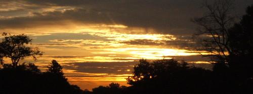 October Sunrise Crop