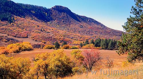 Mancos Autumn