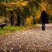 autumnal walk by aspheric.lens