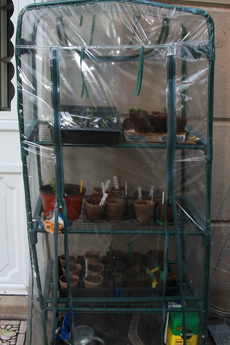 Former Mini Greenhouse