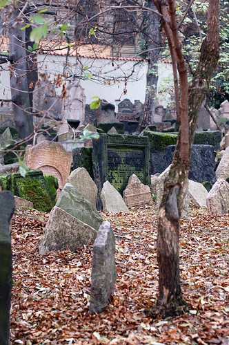 the old Jewish Cemetery