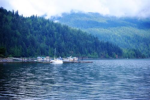 Harrison Lake dock