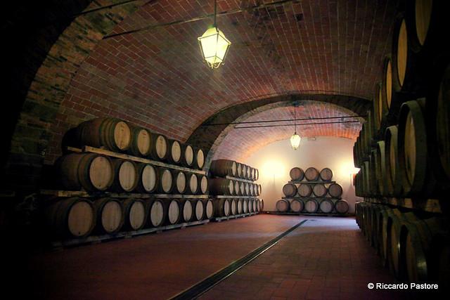 Tenuta Castello d'Albola - Radda in Chianti