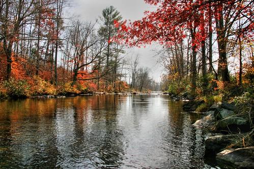 A Piney River Autumn
