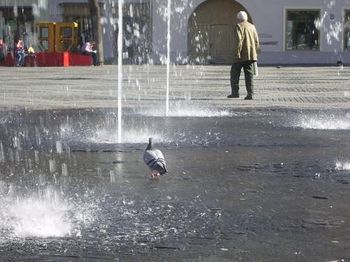 Romania 2007 (16) 041