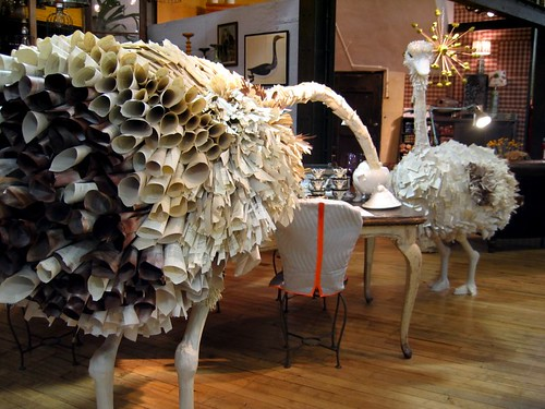 Mischievious ostriches in Anthropologie.