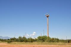Surveillance Tower in Neco
