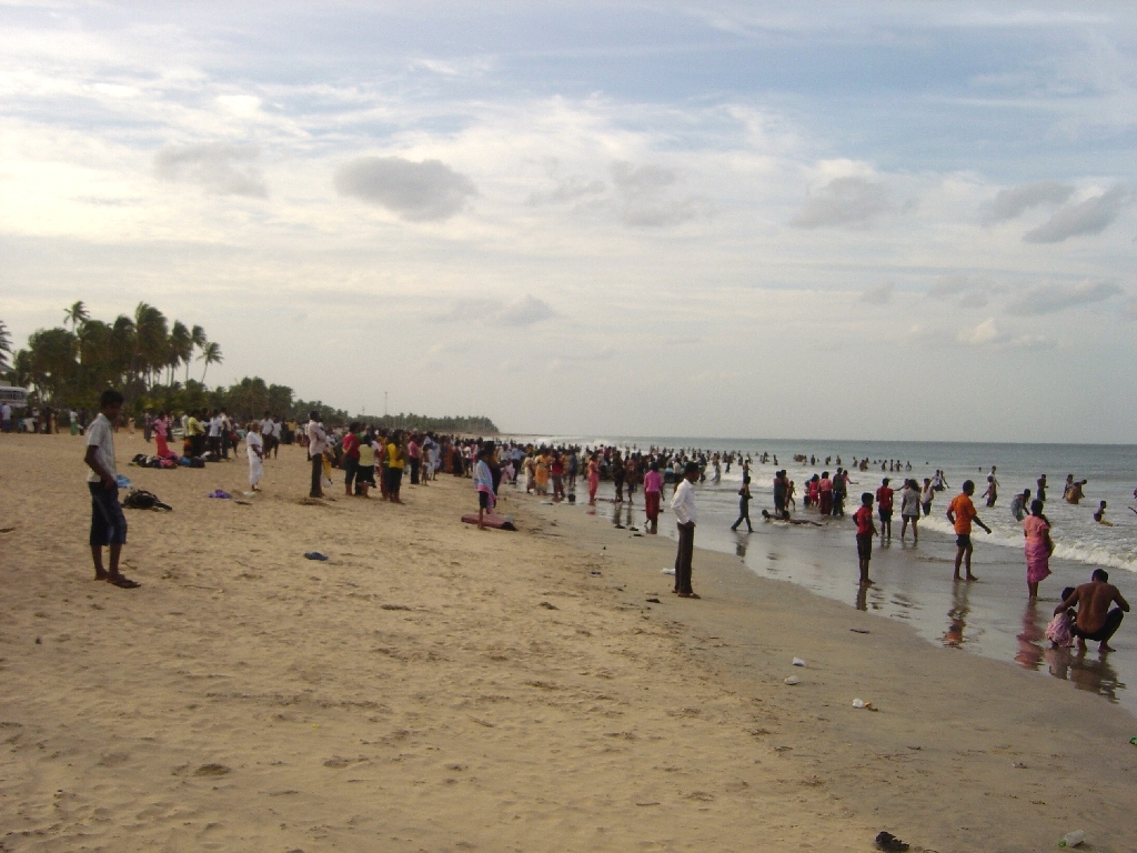 The hordes at shore