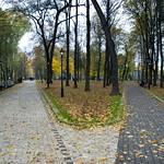 "Autumn Paths <a style=""margin-left:10px; font-size:0.8em;"" href=""http://www.flickr.com/photos/36521966868@N01/4039278905/"" target=""_blank"">@flickr</a>"