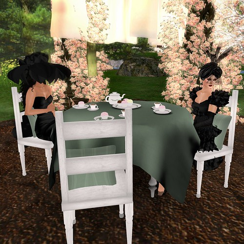 Tea Party 02.06.11 #4
