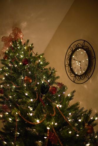 Tree 112709