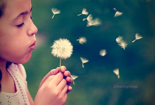 (142/365) Pide un deseo... by albertopveiga