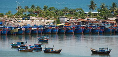 A fleet of boats in the harbor of Nah Trang