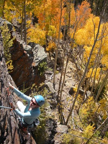 Haley climbing within the beautiful foliage.