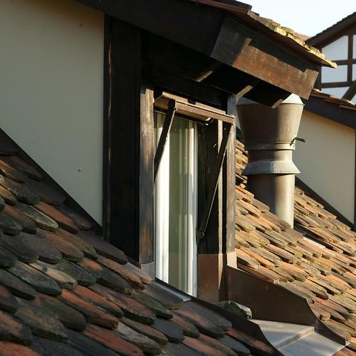Aus dem Küchenfenster 2009 10 15_3044